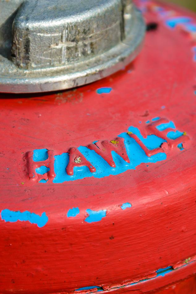 Hydrant (Detail)