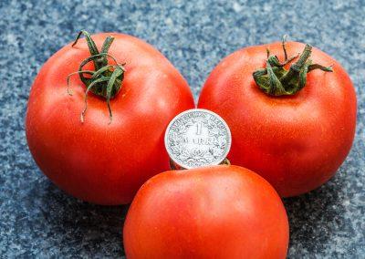 Tomaten-Mark
