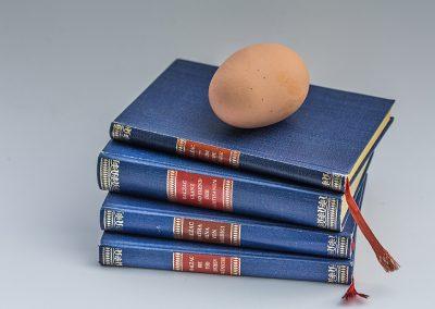 Bücher-Ei